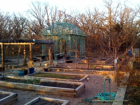 Fruit trees, gazebo, and almost 20 raised beds in my second garden.
